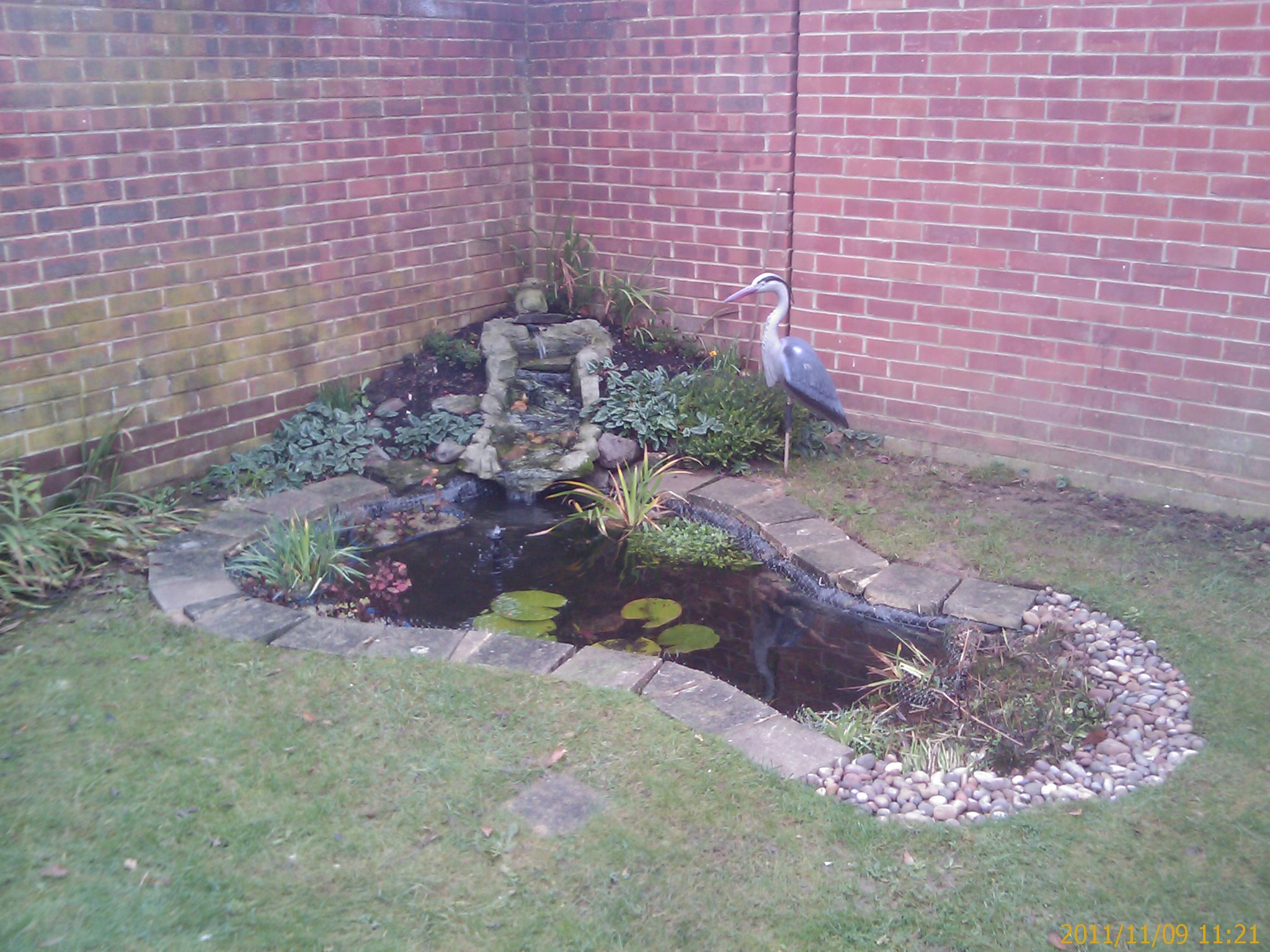 Re lining the fishpond keith 39 s blogs for Places to fish around me