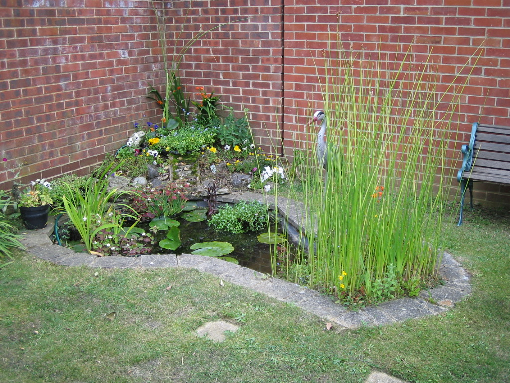 Re lining the fishpond keith 39 s blogs for Water garden pond liners